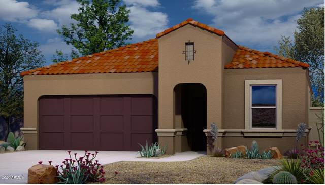 2409 E San Borja Trail, Casa Grande, AZ 85194 (MLS #6061947) :: Lux Home Group at  Keller Williams Realty Phoenix
