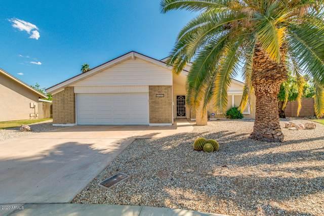 2649 E Larkspur Drive, Phoenix, AZ 85032 (MLS #6061958) :: Brett Tanner Home Selling Team