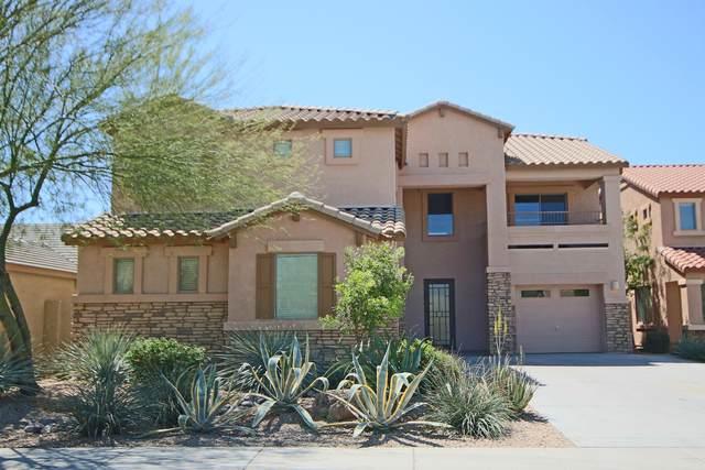 4019 E Walter Way, Phoenix, AZ 85050 (MLS #6061971) :: Dave Fernandez Team | HomeSmart