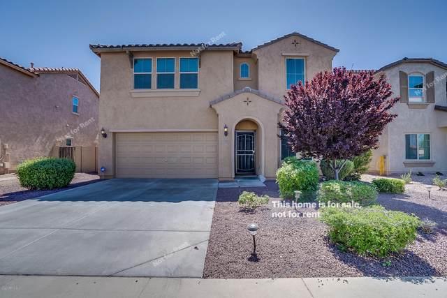 11013 E Sutter Avenue, Mesa, AZ 85212 (MLS #6062049) :: Homehelper Consultants