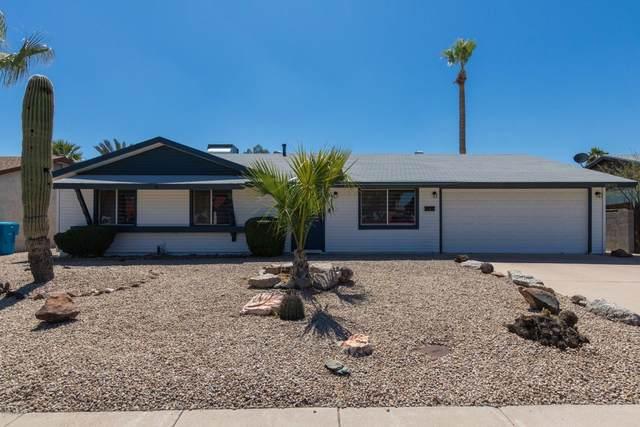 3843 E Friess Drive, Phoenix, AZ 85032 (MLS #6062053) :: Conway Real Estate