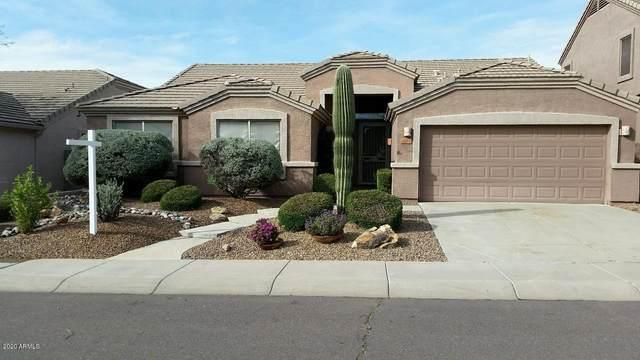4224 E Spur Drive, Cave Creek, AZ 85331 (MLS #6062080) :: Homehelper Consultants