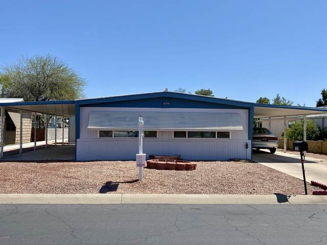 16235 N 32ND Place, Phoenix, AZ 85032 (MLS #6062087) :: Brett Tanner Home Selling Team