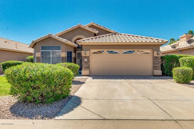 7105 E Jan Avenue, Mesa, AZ 85209 (MLS #6062093) :: Homehelper Consultants