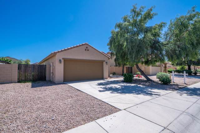38467 N Armadillo Drive, San Tan Valley, AZ 85140 (MLS #6062103) :: The Carin Nguyen Team