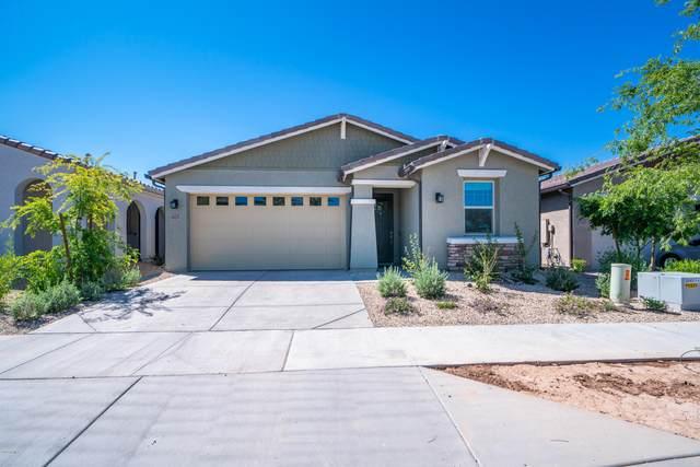 9829 E Timeless Avenue, Mesa, AZ 85212 (MLS #6062122) :: Conway Real Estate