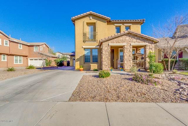 872 E Rojo Court, Gilbert, AZ 85297 (MLS #6062128) :: Kepple Real Estate Group