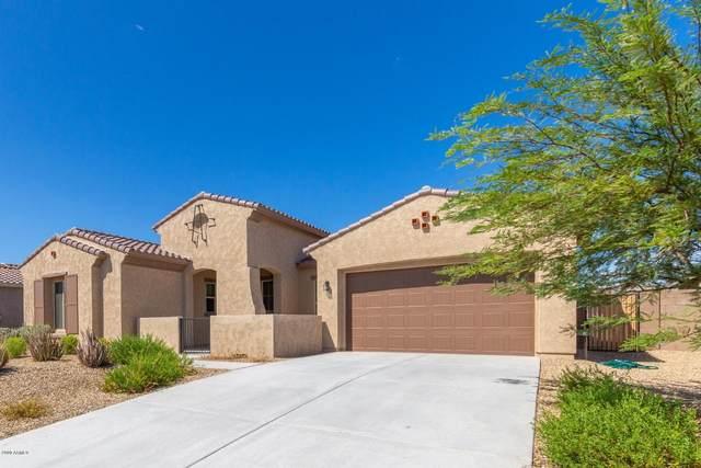 18368 W Thunderhill Place, Goodyear, AZ 85338 (MLS #6062138) :: Nate Martinez Team
