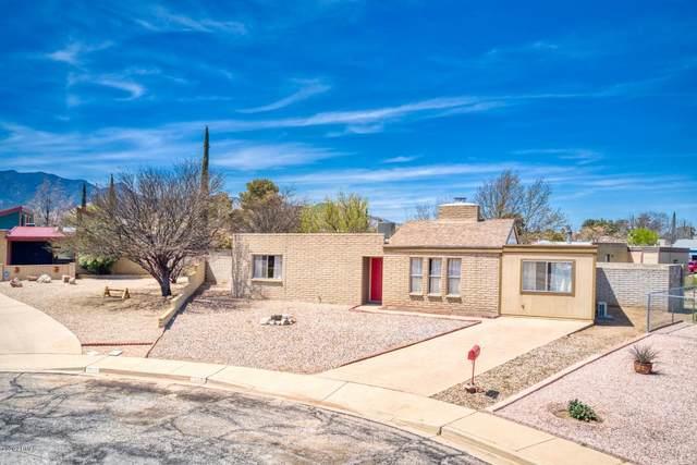 665 Pampas Place, Sierra Vista, AZ 85635 (MLS #6062148) :: Nate Martinez Team