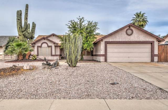 7042 W Brown Street, Peoria, AZ 85345 (MLS #6062154) :: The Laughton Team