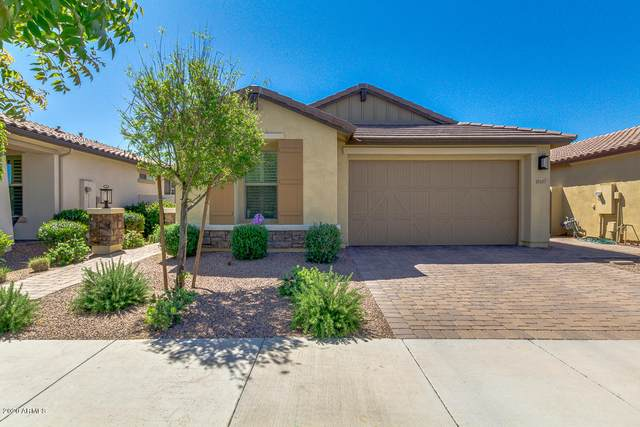 10107 E Tiger Lily Avenue, Mesa, AZ 85212 (MLS #6062162) :: Kortright Group - West USA Realty