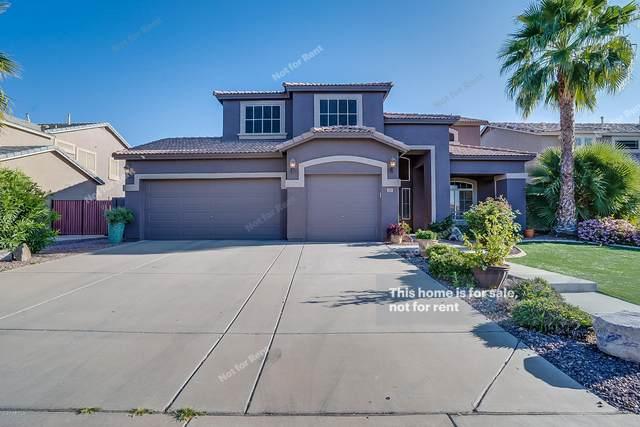 3297 E Mayberry Avenue, Gilbert, AZ 85297 (MLS #6062164) :: My Home Group