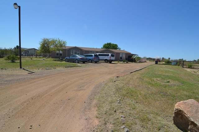 28824 N 203RD Drive, Wittmann, AZ 85361 (MLS #6062186) :: The Results Group