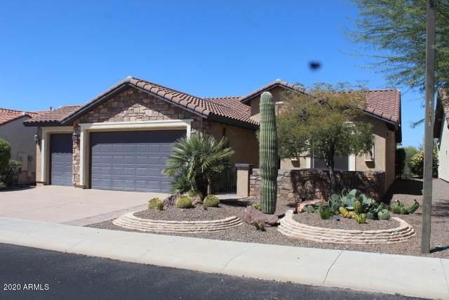 26848 W Runion Drive, Buckeye, AZ 85396 (MLS #6062212) :: The W Group