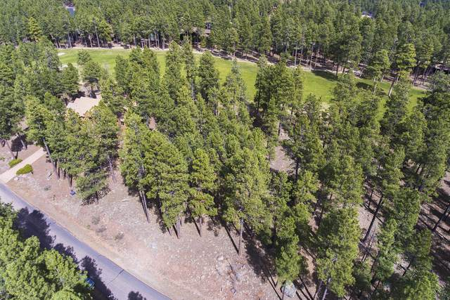 3801 Edward Beale, Flagstaff, AZ 86001 (MLS #6062231) :: Conway Real Estate