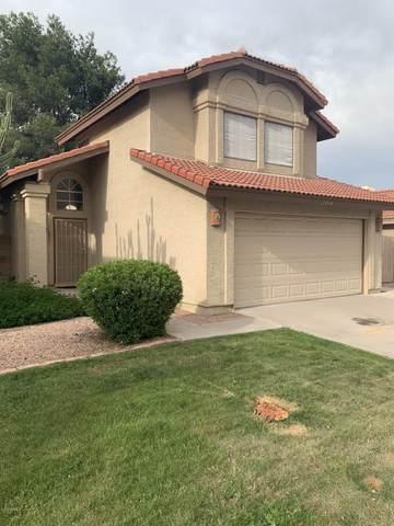2434 W Gail Drive, Chandler, AZ 85224 (MLS #6062251) :: Lucido Agency