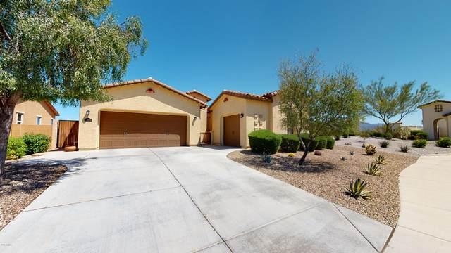 17828 W Desert Wind Drive, Goodyear, AZ 85338 (MLS #6062253) :: The Garcia Group