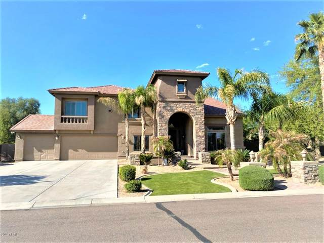 11644 E Navajo Drive, Chandler, AZ 85249 (MLS #6062295) :: My Home Group