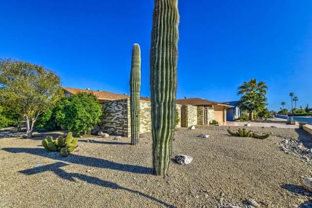 19827 N 130TH Avenue, Sun City West, AZ 85375 (MLS #6062310) :: The Daniel Montez Real Estate Group