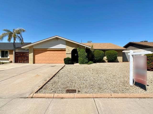 12832 N 42ND Drive, Phoenix, AZ 85029 (MLS #6062335) :: Conway Real Estate