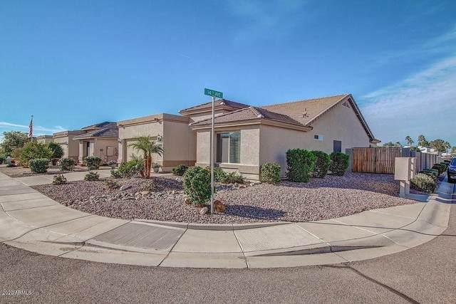 1440 S Apache Drive, Apache Junction, AZ 85120 (MLS #6062341) :: The W Group