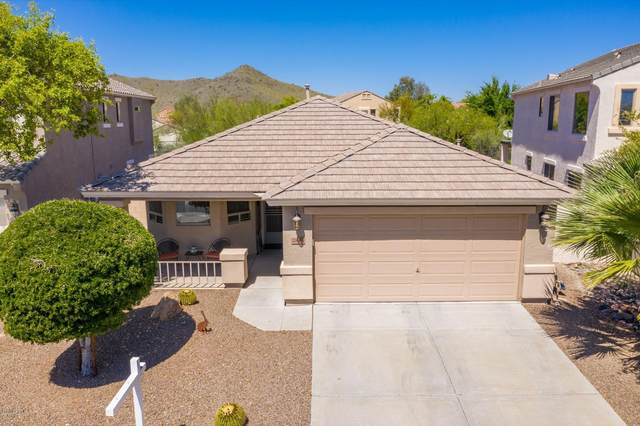 2846 E Shady Spring Trail, Phoenix, AZ 85024 (MLS #6062359) :: The Kenny Klaus Team