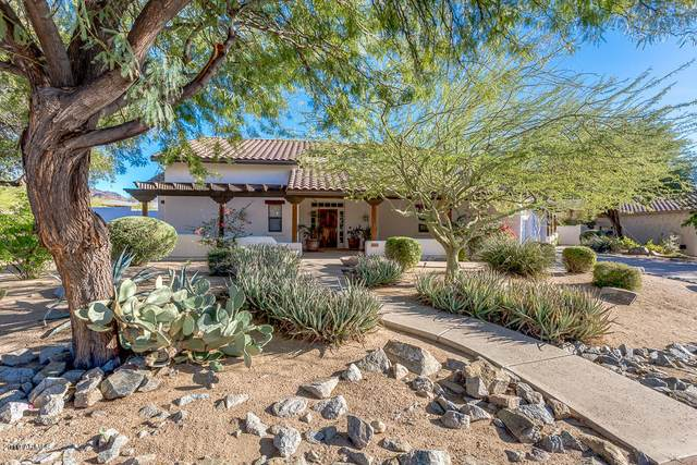 22901 N 91ST Way, Scottsdale, AZ 85255 (MLS #6062368) :: My Home Group