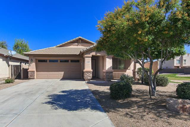 4268 E Mine Shaft Road, San Tan Valley, AZ 85143 (MLS #6062371) :: Conway Real Estate