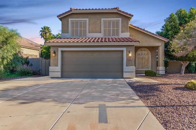 7434 W Tonopah Drive, Glendale, AZ 85308 (MLS #6062387) :: Lucido Agency