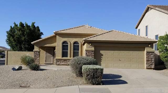 8956 E Hillview Street, Mesa, AZ 85207 (MLS #6062421) :: Lucido Agency