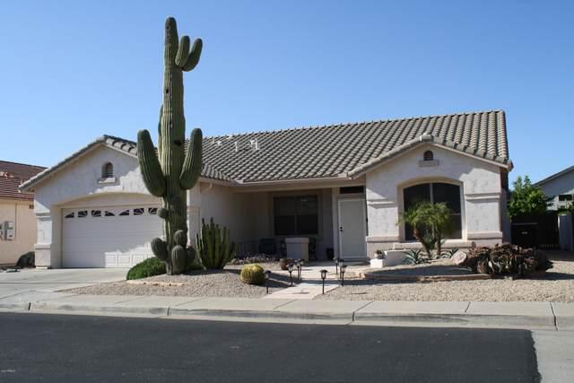 17648 W Skyline Drive, Surprise, AZ 85374 (MLS #6062438) :: My Home Group