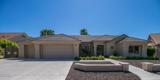 20407 N 133RD Drive, Sun City West, AZ 85375 (MLS #6062475) :: Yost Realty Group at RE/MAX Casa Grande
