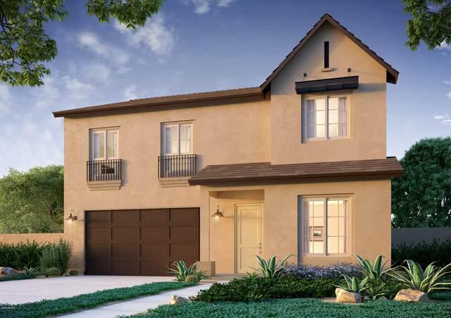 21147 W Hillcrest Boulevard, Buckeye, AZ 85396 (MLS #6062600) :: The Garcia Group