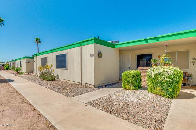 11074 W Coggins Drive, Sun City, AZ 85351 (MLS #6062601) :: Yost Realty Group at RE/MAX Casa Grande