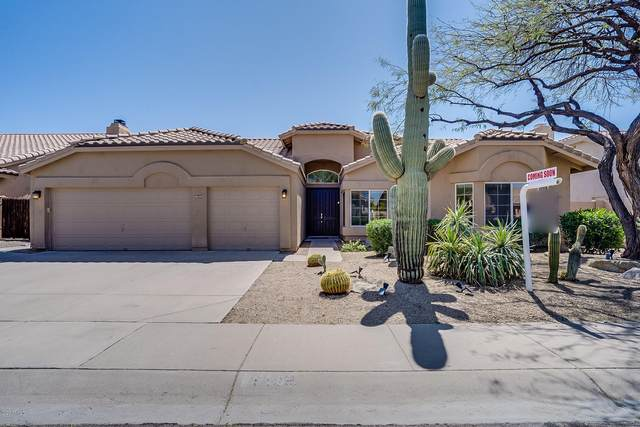 9129 E Palm Tree Drive, Scottsdale, AZ 85255 (MLS #6062715) :: Lux Home Group at  Keller Williams Realty Phoenix