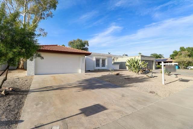 3852 E Dahlia Drive, Phoenix, AZ 85032 (MLS #6062741) :: Santizo Realty Group