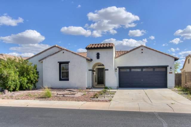 30367 W Whitton Avenue, Buckeye, AZ 85396 (MLS #6062774) :: The Laughton Team