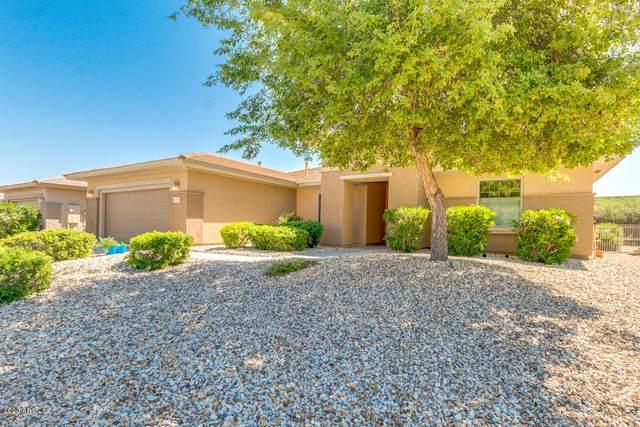 20253 N Sojourner Drive, Surprise, AZ 85387 (MLS #6062818) :: Keller Williams Realty Phoenix