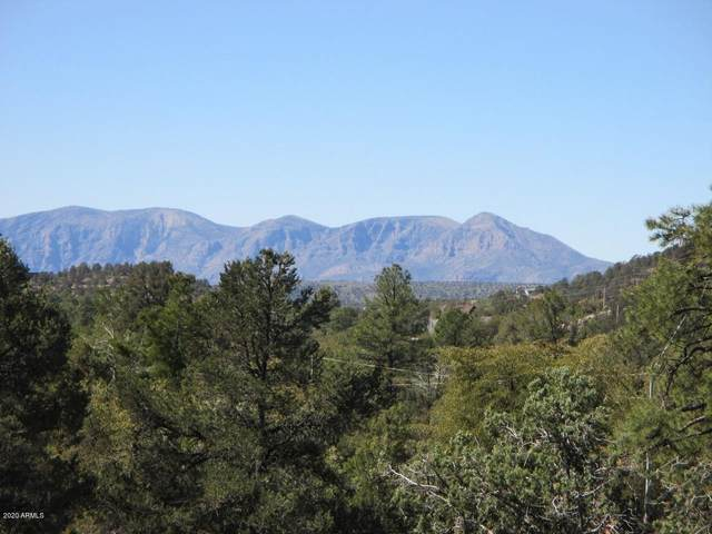 1701 N Beeline Highway, Payson, AZ 85541 (MLS #6062824) :: The W Group