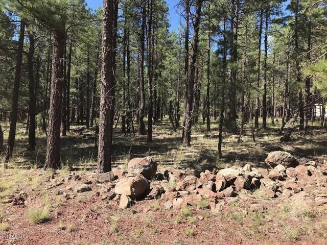 7401 E Robin Hood Road, Williams, AZ 86046 (MLS #6062835) :: NextView Home Professionals, Brokered by eXp Realty