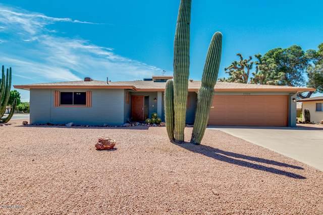 6335 E Dallas Street, Mesa, AZ 85205 (MLS #6062844) :: Lux Home Group at  Keller Williams Realty Phoenix