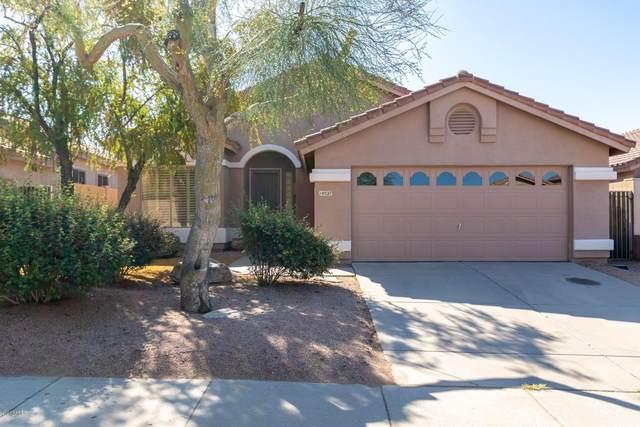 10527 E Morning Star Drive, Scottsdale, AZ 85255 (MLS #6062846) :: Conway Real Estate