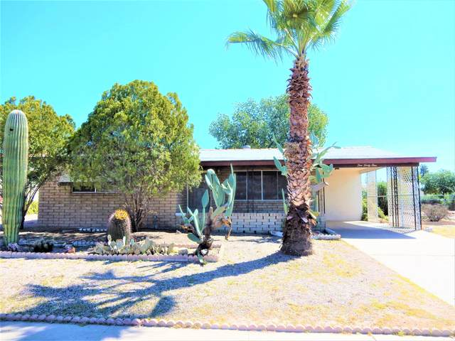 1041 S Delaware Drive, Apache Junction, AZ 85120 (MLS #6062852) :: The Bill and Cindy Flowers Team