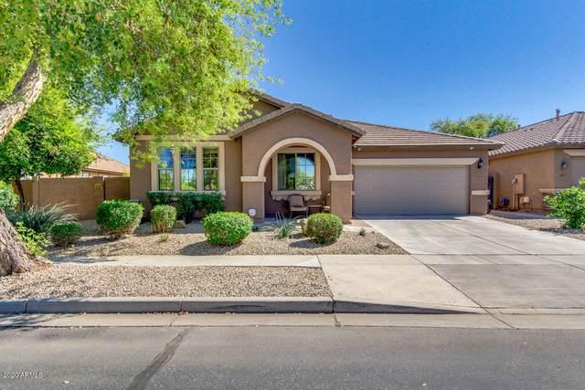 14565 W Poinsettia Drive, Surprise, AZ 85379 (MLS #6062888) :: Arizona 1 Real Estate Team