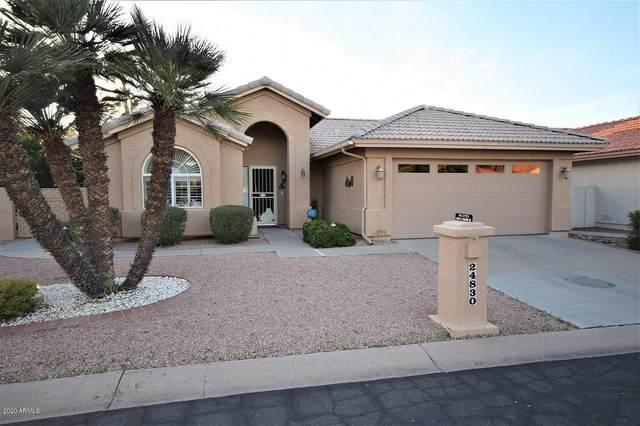 24830 S Foxglenn Drive, Sun Lakes, AZ 85248 (MLS #6062902) :: Riddle Realty Group - Keller Williams Arizona Realty
