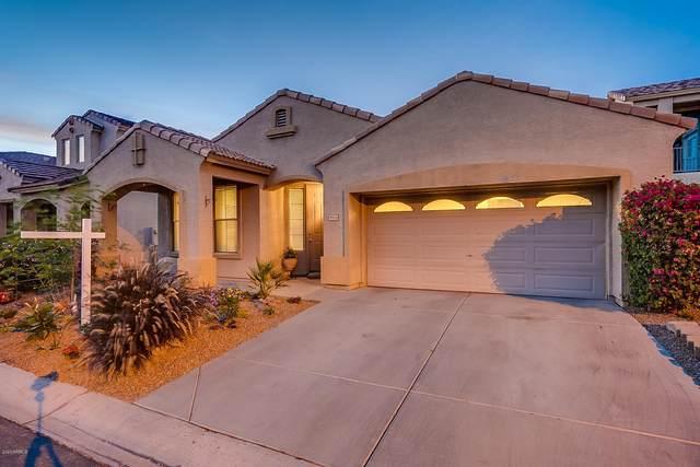 9056 E Gable Avenue, Mesa, AZ 85209 (MLS #6062909) :: Conway Real Estate