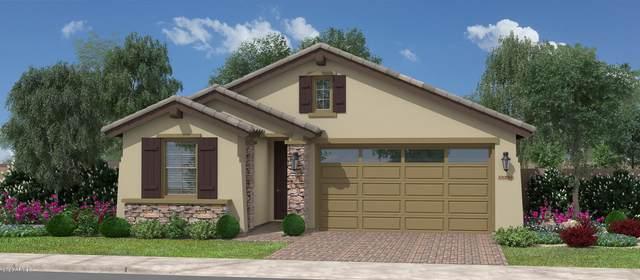 35207 N Agua Caliente Road, San Tan Valley, AZ 85142 (MLS #6062919) :: Dijkstra & Co.
