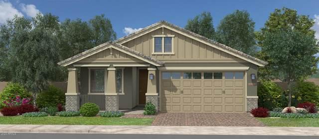 2807 W Canada De Oro Road, San Tan Valley, AZ 85142 (MLS #6062946) :: Dijkstra & Co.