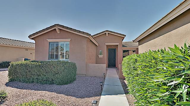 42819 W Whimsical Drive, Maricopa, AZ 85138 (MLS #6062996) :: Revelation Real Estate