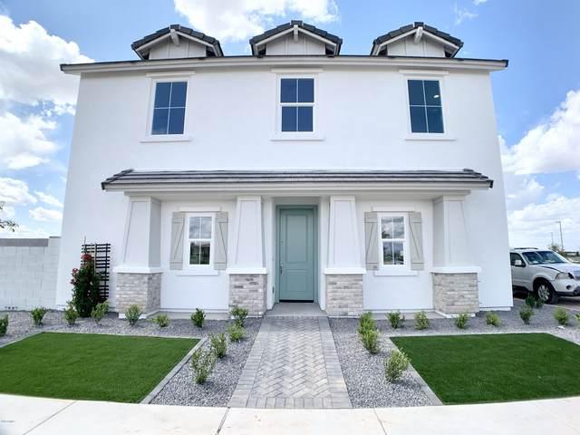 9509 E Talon Avenue, Mesa, AZ 85212 (MLS #6063029) :: Conway Real Estate